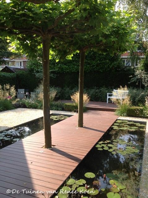 Bomen Voor In De Tuin.Elke Tuin Verdient Een Boom Tuinontwerpervinden Nl Tog