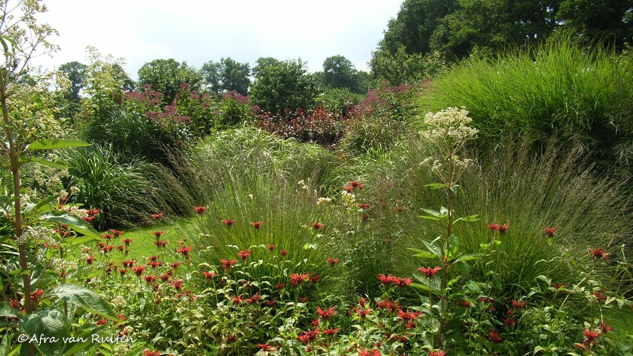 Tuinen In Vorm.Compositie In De Tuin Tuinontwerpervinden Nl Tog