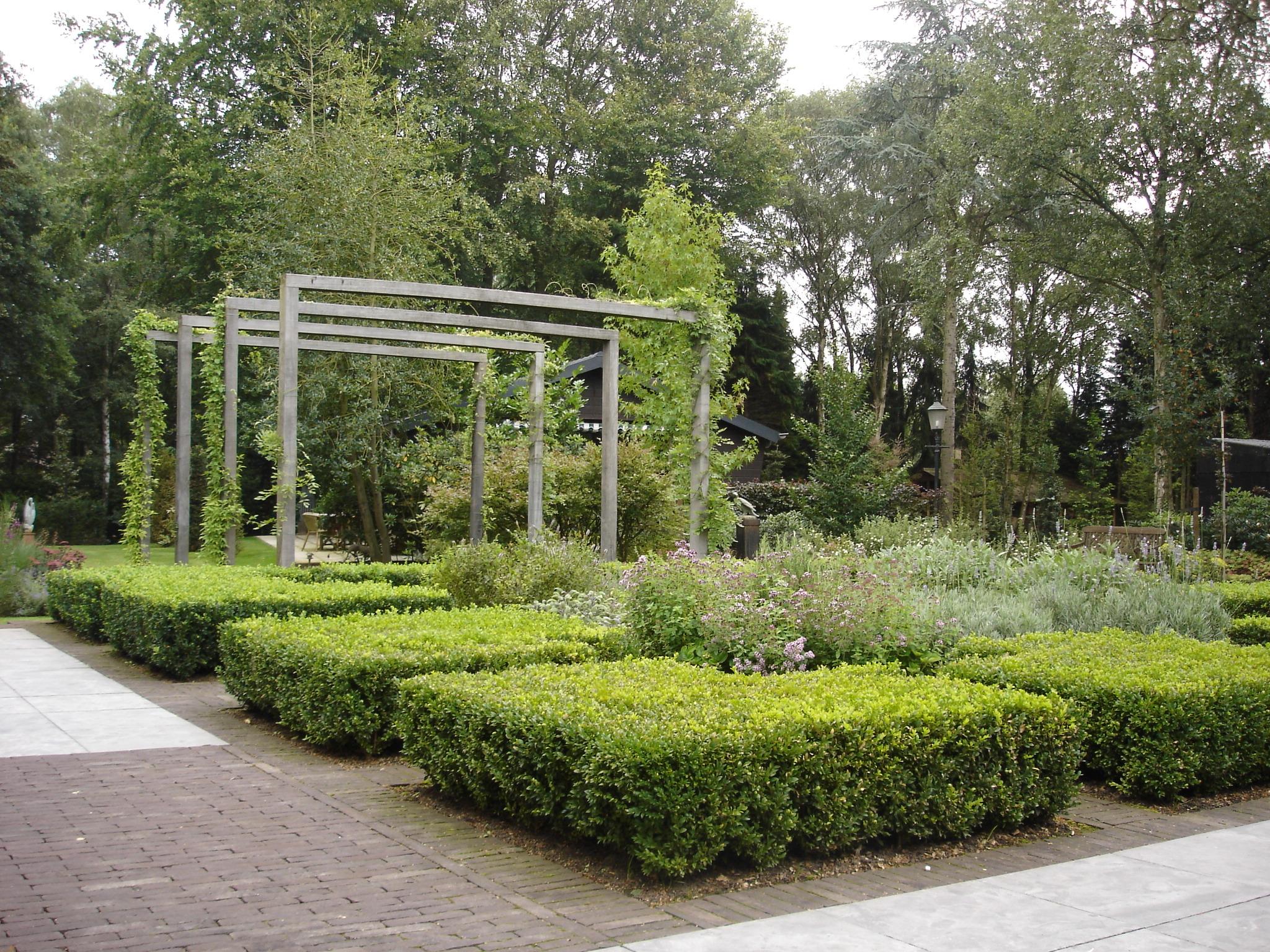 Arianne blonk tuinontwerp beplantingsadvies hooge for Tuinontwerp noord holland